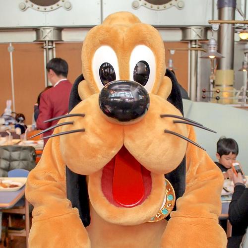 ディズニーの犬キャラクター10選!名前や登場映画と併せてご紹介!新登場のクッキーも♪