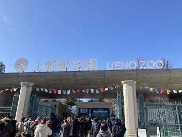 【2019】上野動物園の混雑解説!夏休み・冬休み・春休み・GWの混雑状況&回避方法まとめ!