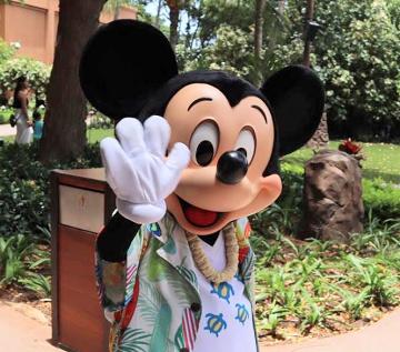【2020】アウラニディズニーお土産グッズまとめ!宿泊者以外も購入OK!ハワイ限定&ダッフィー・オルも!