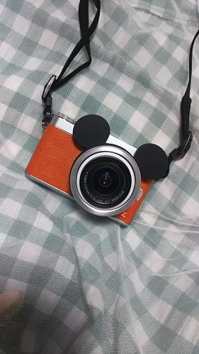 【初心者向け】ディズニーにおすすめのカメラグッズ・アクセサリーまとめ!