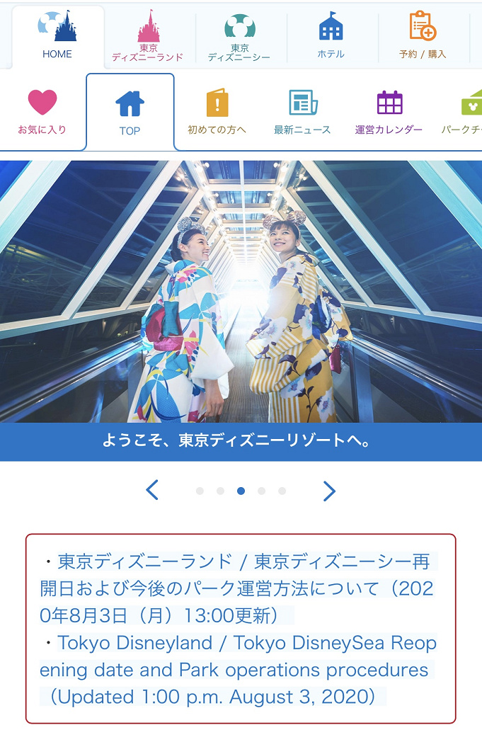 ディズニー チケット 対応 web フォーム