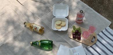 【代々木公園】ピクニックの楽しみ方ガイド!持ち物やおすすめテイクアウトまとめ!