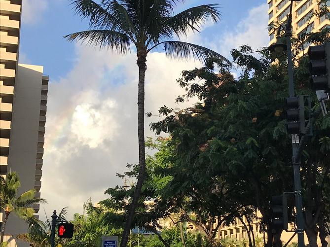 【体験談】ハワイでレンタカーを借りるには?おすすめ会社・国際免許の有無など徹底解説!