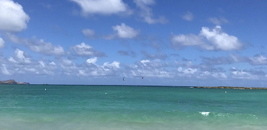 【ハワイ旅行記】子連れ・三世代旅行でホノルル4泊6日!グルメ・宿泊先・観光など旅行日程を全公開