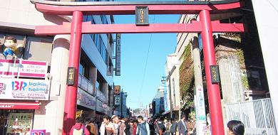【鎌倉】小町通りで人気グルメを食べ歩き!抹茶アイスやコロッケなどおすすめのお店11選