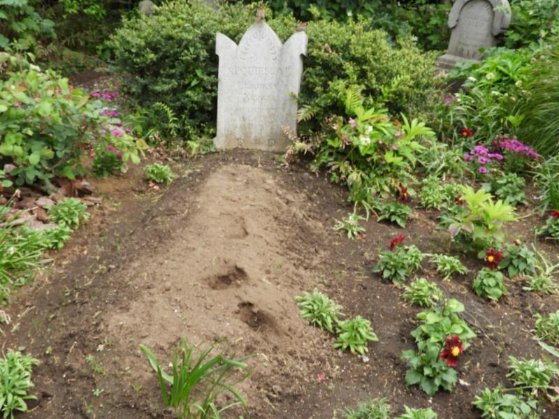 館のあちこちにある墓は、まるで埋めたばかりのようだが…