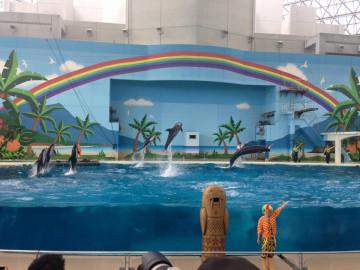 八景島シーパラダイスの水族館はジンベエザメに注目!エリア&開催イベントまとめ!