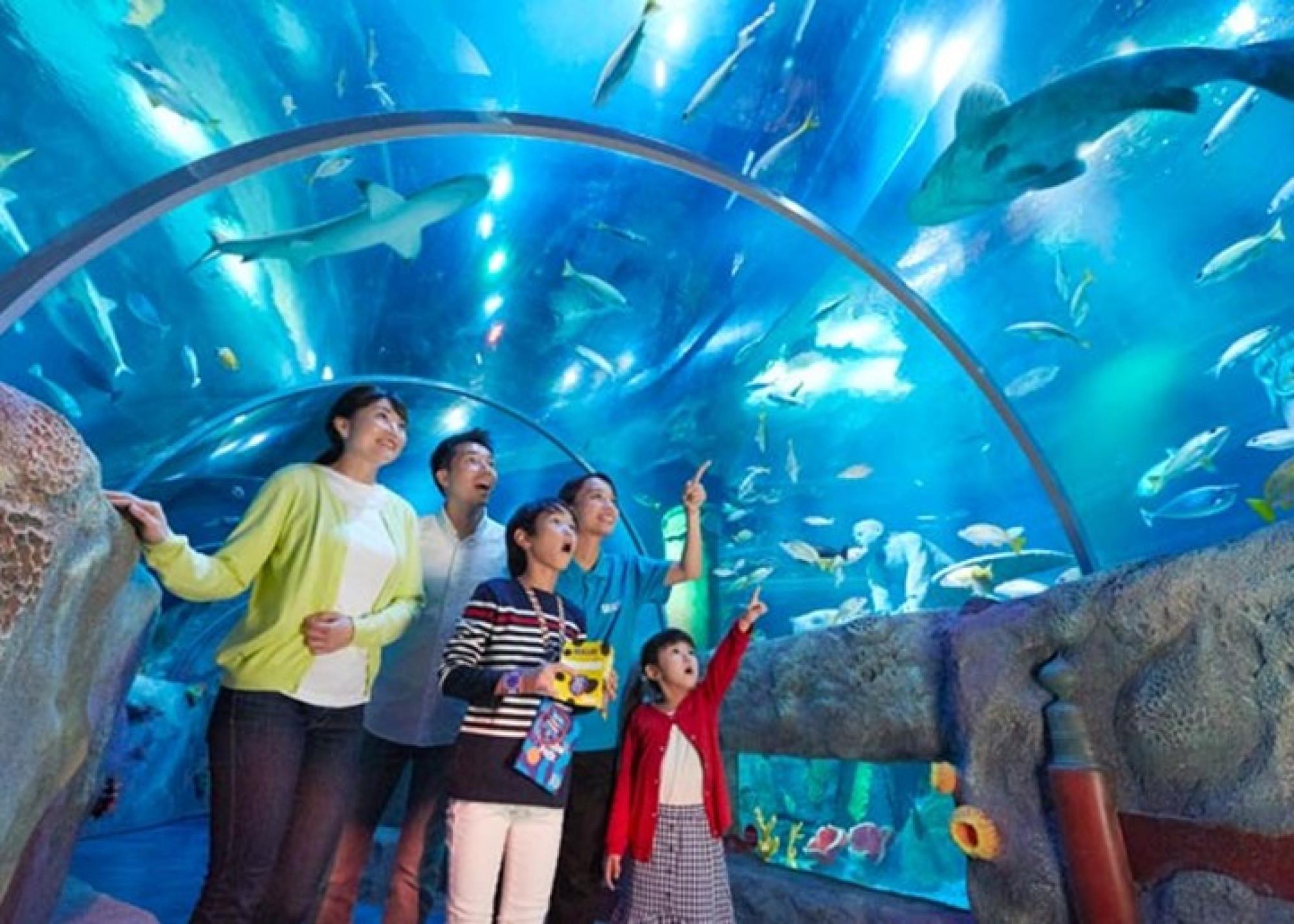 体験型水族館シーライフ名古屋も楽しめる