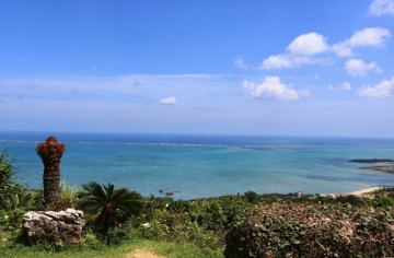 【沖縄】海の見えるカフェくるくまを完全ガイド!アクセス、メニュー、絶景を紹介♪