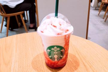【日本初】手話が共通言語のスターバックスがオープン!東京・国立市の最新スタバを現地レポ!