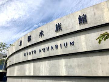 【最新】京都水族館に行ってきた!アクセス、お土産、見どころ、体験談をご紹介!