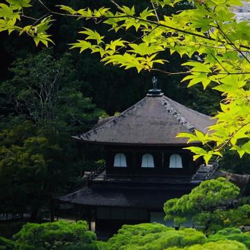 【京都】銀閣寺の魅力と拝観情報まとめ!御朱印、カフェ、アクセス、庭園などの見どころも
