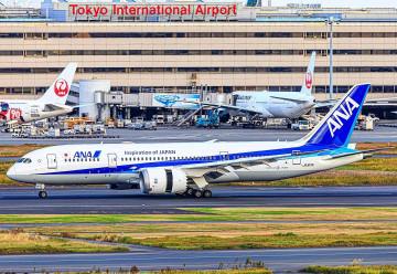 【攻略】羽田空港から台北まで運航する航空会社を徹底調査!発着時刻や飛行機の特徴まとめ