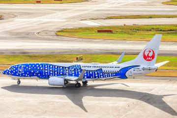 【沖縄】那覇空港へ行ける航空会社を徹底比較!沖縄らしいジンベエザメジェットが大人気!